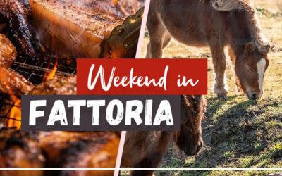 Weekend in Fattoria! Divertimento e buon cibo all'aria aperta!